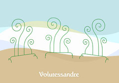 Objet décoration Volutessandre
