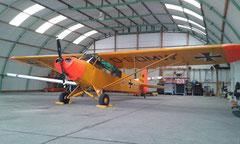 Piper PA-18-95 (L-18C) Super-Cub - D-EMDW