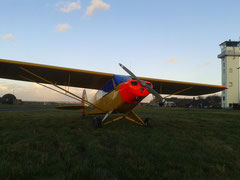Piper PA-18-95 (L-18C) Super-Cub - D-ELFC