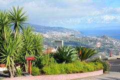 Cabo Girão, Blick nach Funchal