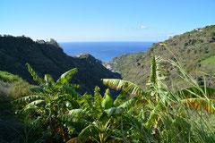 Levada im Tal der Ribeira da Ponta do Sol