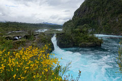 Petrohue, Wasserfälle