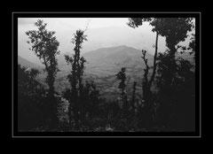 Abstieg nach Bhandar