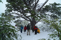 Tierra del Fuego NP, Argentinien