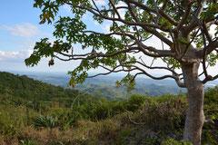 Parque Codina, Sierra del Escambray