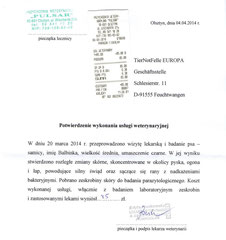 3 Rg. TA Pulsar 85 Zloty - 04.04.14