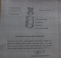 6 Rg. TA Pulsar 47 Zloty Hautgeschabsel - 07.07.14