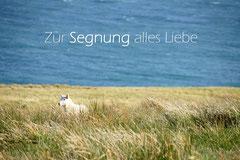 Bildnr. 180 / Segnung