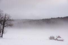 Bildnr. 225 / Winterlandschaft