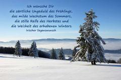 Bildnr. 283 / Schneelandschaft, Kandel bei Freiburg
