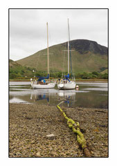 Bildnr. 221 / Schottland, Lochranza, Arran