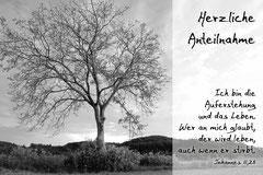 Bildnr. 112 / Baum bei Heuweiler