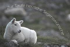 Bildnr. 173 / Taufe