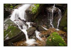 Bildnr. 223 / Wasserfall, Schwarzwald
