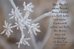 Bildnr. 291 / Winter Jahreslos 2014