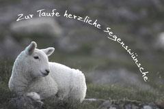 Bildnr. 174 / Taufe
