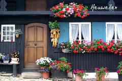 Bildnr. 322 / Bauernhaus