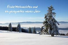 Bildnr. 284 / Schneelandschaft, Kandel bei Freiburg
