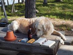 Ds Bier isch scho wieder läär...