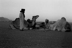 Algérie Hoggar © Bruno Deveze
