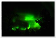 Bruno Deveze © 2019 Raquettes et aurores boréales Laponie Finlande