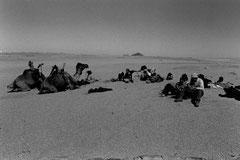 Tamanrrasset-Djanet 26 jours & 620 km à pied © Bruno Deveze