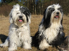 Sunya und Kyimo