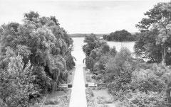 August: Der Rosengarten