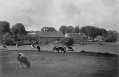 August: Der Bauhof um 1934