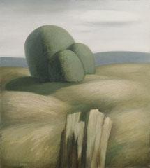 Пейзаж (к. м., 1986)