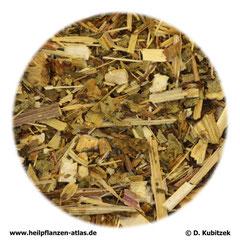 Purpur-Sonnenhutkraut (Echinaceae purpureae herba)
