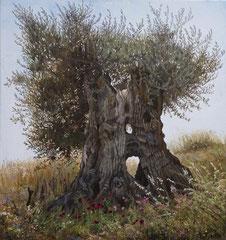 Δέντρο ελιάς,   κώδικας №29  (80χ70cm) Προσφορα τιμή-250€+μεταφορά ,  λαδι σε μουσαμα, (χωρίς κορνίζα)