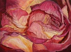 Ροζ τριαντάφυλλο   κώδικας №118  (60χ80cm)   λαδι σε μουσαμα