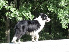 Jill April 2009