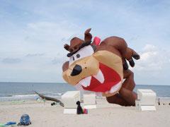 Der Tasmanische Teufel macht der Frau im Strandkorb Angst