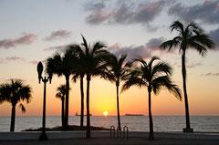 und hier der Blick zum Sonnenaufgang (das sehe ich jeden Morgen so!).