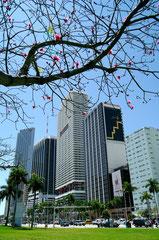 Miami Down Town.