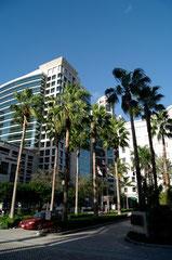 Fort Lauderdale Downtown - rechts ist die Schule im 6. Stock.