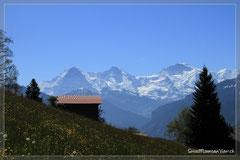 wunderschönen Ausblick auf das Dreigestirn Eiger, Mönch und Jungfrau.