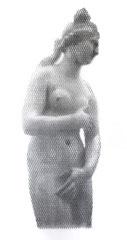 Venere Capitolina, 2018, 195x75cm, dieci fogli di rete metallica intagliati a mano
