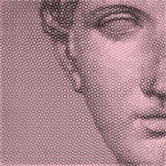 Venere, vista 3, 2019, 100x100cm, dieci fogli di rete metallica intagliati a mano