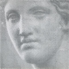 Venere Capitolina, 2019, 100x100cm, dieci fogli di rete metallica intagliati a mano