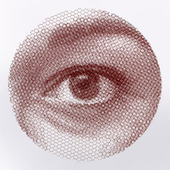 Right Elenas's sight, 2019, 80x80cm, dieci fogli di rete metallica intagliati a mano