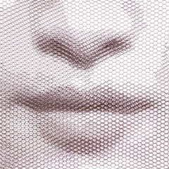 Asami's breath, 2019, 80x80cm, dieci fogli di rete metallica intagliati a mano