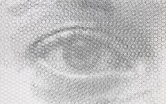 Left Carlotta's sight, 2019, 50x80cm, dieci fogli di rete metallica intagliati a mano