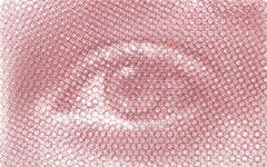 Right Carlotta's sight, 2019, 50x80cm, dieci fogli di rete metallica intagliati a mano