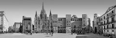 N 222_ La catedral de Barcelona BN