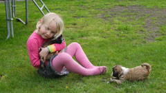 30.4.12 Dana mit den Welpen auf dem Rasen...