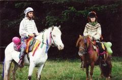 Welsh Stute Susu und Shetland Wallach Nobody (Bruder von Montana)