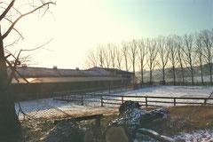 Reithalle mit Außenboxen + Reitplatz im Wintergewand. Januar 2012